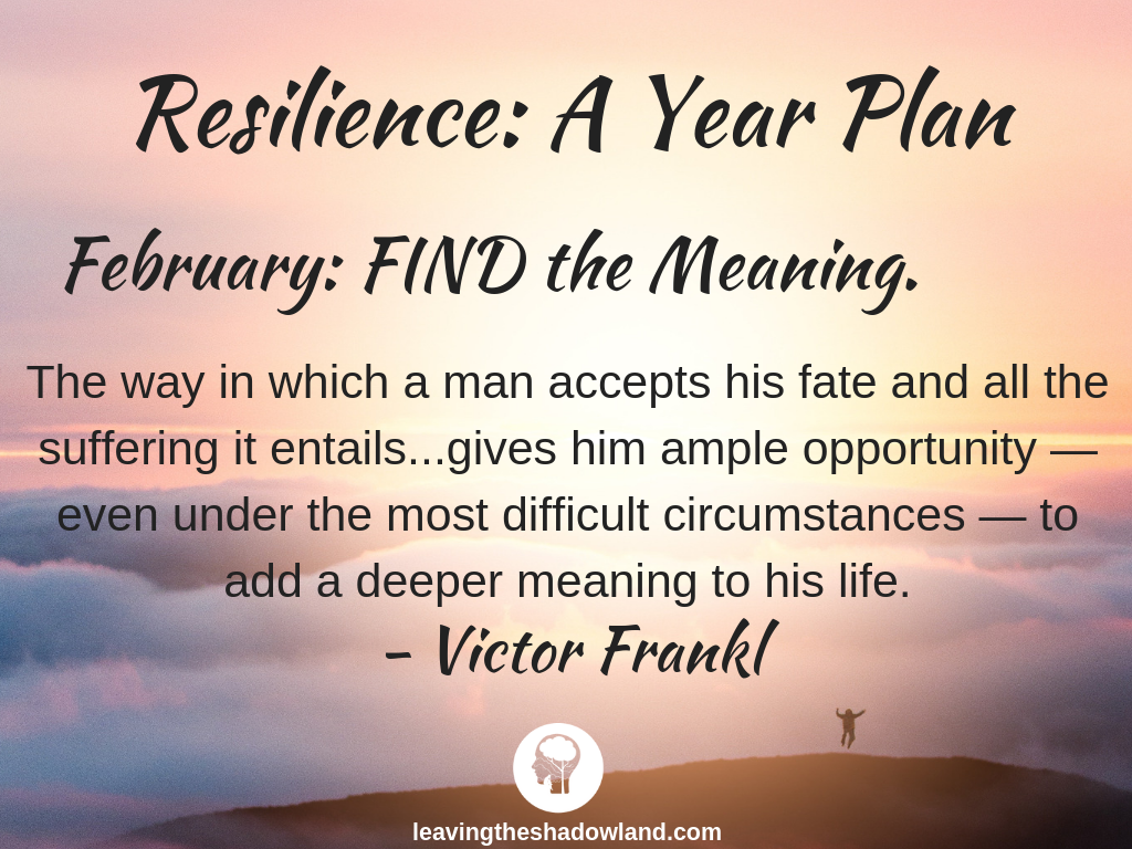 Resilience Plan for February: FIND the Meaning