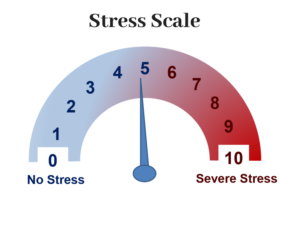 Stress Scale by Pamela Coburn-Litvak
