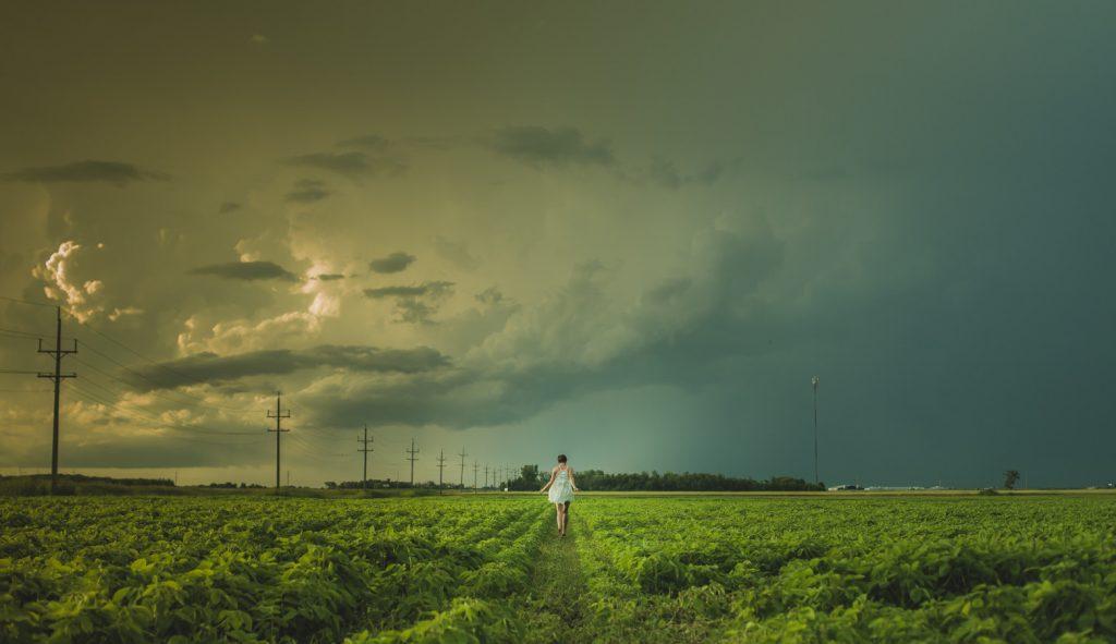 Photograph by Matthew Henry on Unsplash